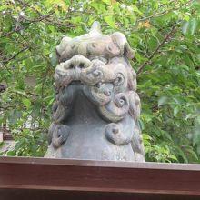 戦災の狛犬 (綱敷天神社 御本社)
