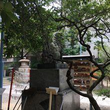 梅の花 (綱敷天神社 御本社)