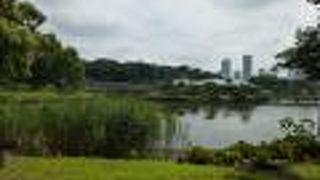 浜離宮恩賜庭園 潮入の池