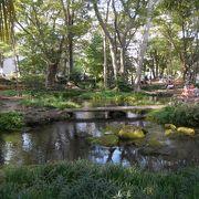 夏場に涼を提供してくれる清流の公園