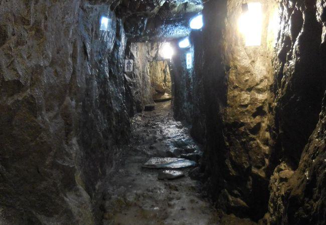 伊豆最古級の手掘りの坑道跡