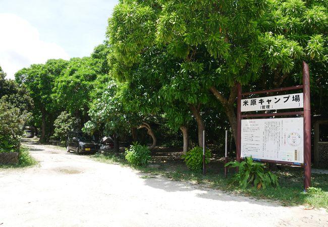 米原ビーチ前の人気キャンプ場