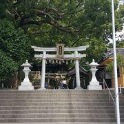 大きな楠に癒される言霊の神社