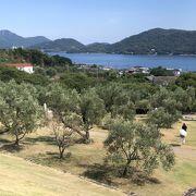 オリーブの木と瀬戸内海、眺めてよしの道の駅