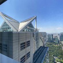 これぞパークハイアットの特徴のガラスの三角屋根!!映えますw