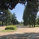 彩の森入間公園
