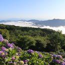 美の山公園