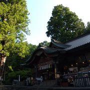 樹齢1000年の冨士太郎杉