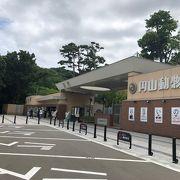北海道らしい動物園!