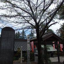 山口観音 (金乗院)