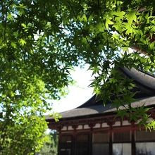 長弓寺本堂
