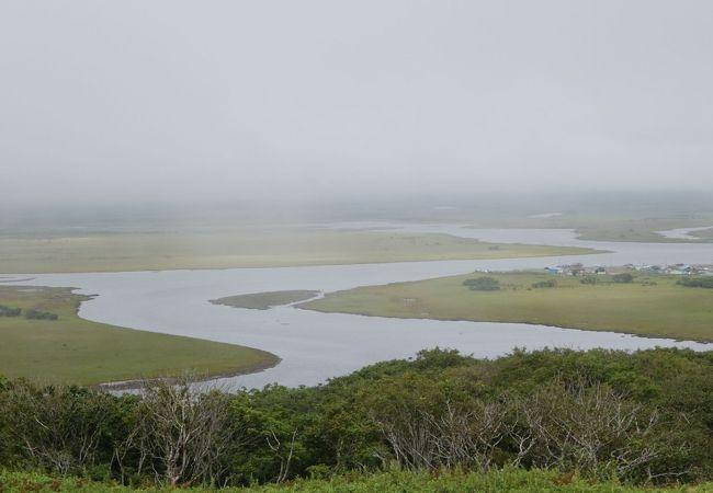 これぞ湿原という景観