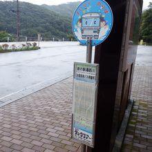 湯西川ダックツアー 水陸両用バス