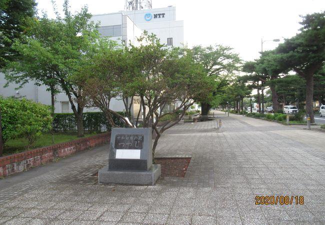 官庁街通り(駒街道)