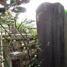 芳崖の略歴を刻んだ板碑
