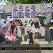 広い動物園