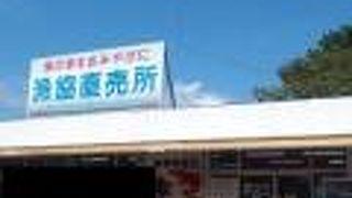 松崎町漁業協同組合直売所