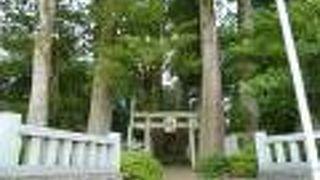 川柳浅間神社