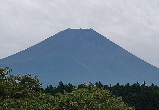 道の駅朝霧高原 富士山展望台