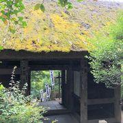 門の裏側からの茅葺屋根の苔は見ごたえあり