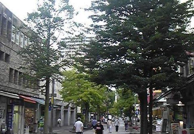 伊勢佐木町商店街 (イセザキモール)