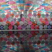 温室の中の水鏡のアンブレラスカイはとてもフォトジェニック
