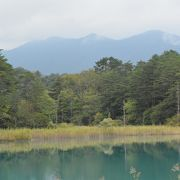 磐梯山の噴火によってできた沼は季節や天気によって色が変わって見えます。