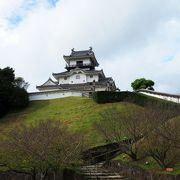 見晴らしの良い名城。