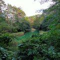 名前は赤沼ですが水の色は緑色  鉄分の多い水のせいで沼底の土が赤茶色でした