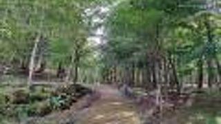 山中湖 文学の森