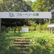 日本一になったこともある道の駅