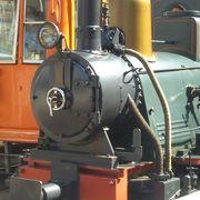 可愛い坊っちゃん列車
