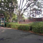 大宮公園の中にあります。