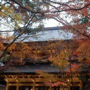 夜間照明に照らし出された永源寺のもみじ