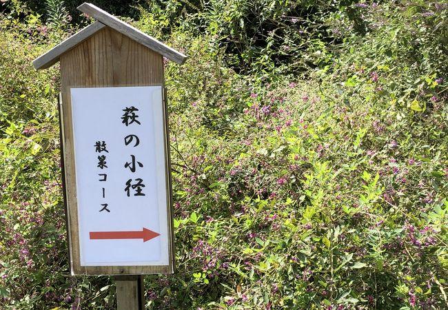 植物園 神戸 市 森林