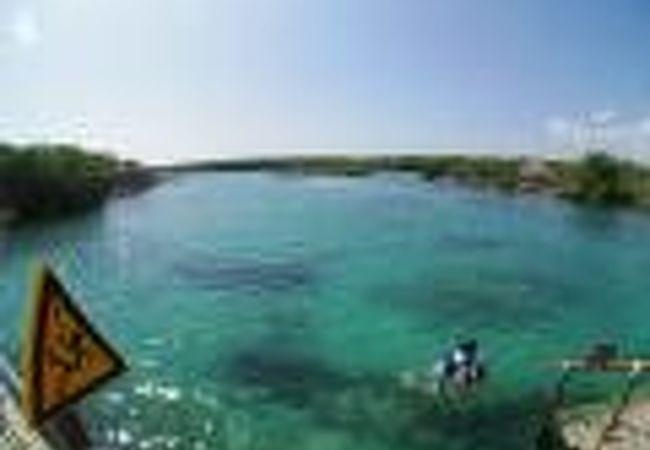 海に繋がる小川を...浮き輪をつけて、ぷかぷか...泳いで下る...俺もあと40歳若かったらこういうの楽しめたかもね...(シェルハ海洋公園/カンクン/メキシコ)
