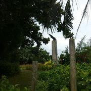 離島ターミナルの前にある公園