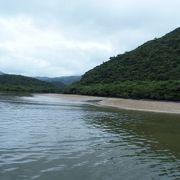 西表島の自然を凝縮したような川