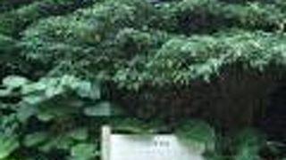 ンブフル展望台