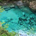 阿寺ブルーと呼ばれる阿寺渓谷を存分に味わえるキャンプ場