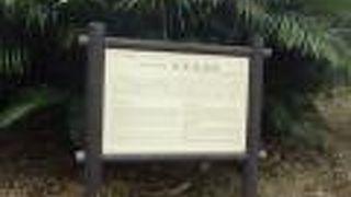 新里村遺跡
