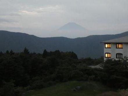 仙石原温泉 ホテルグリーンプラザ箱根 写真