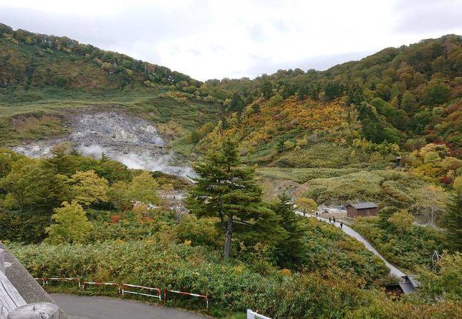 10/10 紅葉進捗 玉川温泉