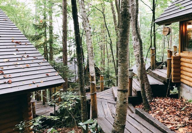 森のろうそく屋