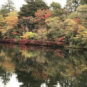 紅葉が水面に映る池
