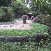 綺麗な動物園