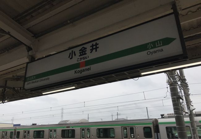 東北本線(宇都宮線)小金井駅:何も見当たらず