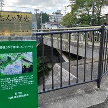 覗き橋から下を覗くと…、
