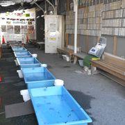 大和郡山の金魚グッズと金魚すくい