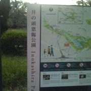 夕方の井の頭公園